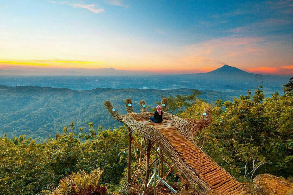 See The Beautiness Of Pengger Forest In Yogyakarta