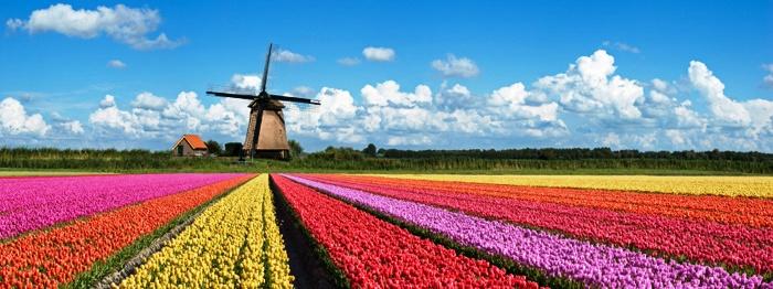 Berbagai Destinasi Wisata leiden, di Eropa